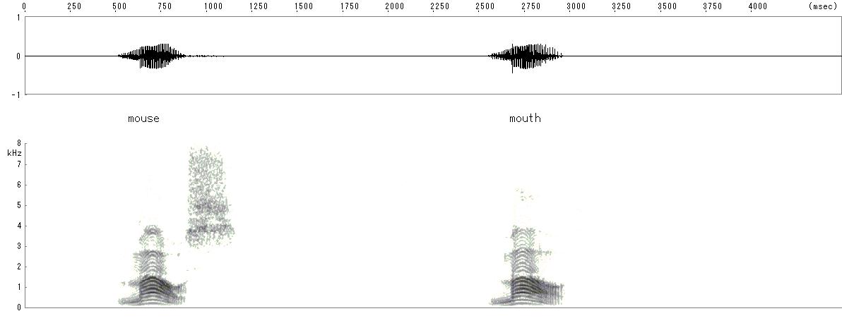 スペクトル画像